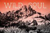 Ombre Adventure II Wild Soul