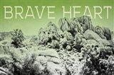 Ombre Adventure V Brave Heart