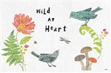 Wild Wings I