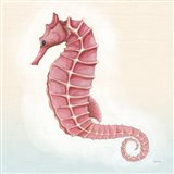 Boardwalk Seahorse