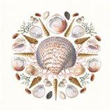 Ocean Mandala I