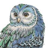 Beautiful Owls I Peacock Crop