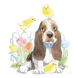Easter Pups V