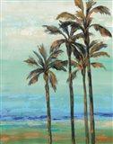 Copper Palms I