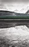 Waterfowl Lake Panel I BW with Color