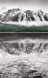 Waterfowl Lake Panel II BW with Color