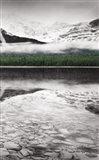 Waterfowl Lake Panel III BW with Color