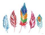 Rainbow Feathers IV