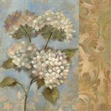 Hydrangea on Soft Blue