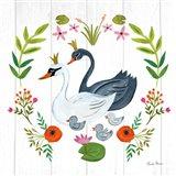 Swan Love IV