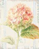 Floursack Florals VI