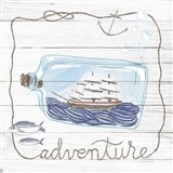 Ship in a Bottle Adventure Shiplap