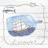 Ship in a Bottle Discover Shiplap