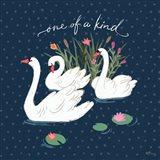 Swan Lake V