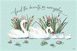 Swan Lake I Mint
