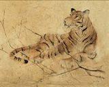 Global Tiger Light Crop