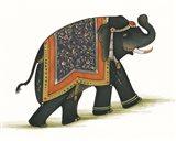 India Elephant I Light Crop