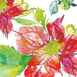 Poinsettia Pretty III