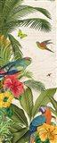 Parrot Paradise VI