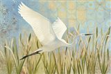 Snowy Egret in Flight v2