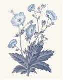 Blue Botanical VI