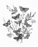 Butterfly Bouquet I Linen BW I