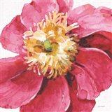 Pink Garden VI