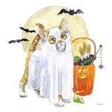 Halloween Pets V
