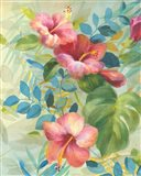 Hibiscus Garden II