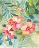 Hibiscus Garden III