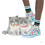 Cutie Kitties VII