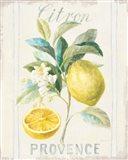Floursack Lemon IV