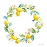 Floursack Lemon V on White