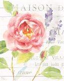 Maison Des Fleurs III