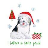 Christmas Critters III