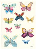 Butterfly Charts I
