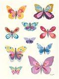 Butterfly Charts II