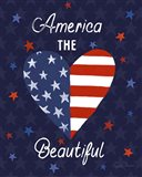 America The Beautiful VI