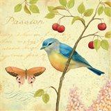 Garden Passion IV