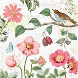 Studio Botanicals III