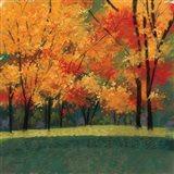 Bright Autumn Day I