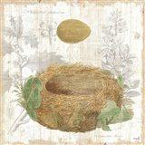 Botanical Nest IV