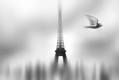 Eiffel Serene Poster by Sol Marrades for $45.00 CAD