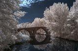 Pamplona Infrared