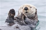 Yesterday I Caught A Fish This Big! - Otter, Alaska