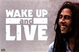 Bob Marley - Wake Up