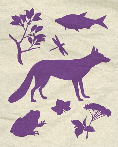 Woodland Creatures I Poster by Clara Wells for $16.25 CAD