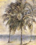 Palm Hammock II