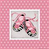 Wild Child Ballet Slippers