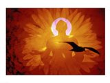 Image of a flower and bird superimposed on a person meditating